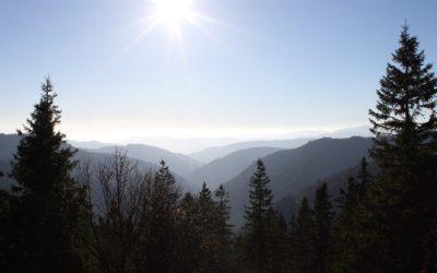 Unsere Klosterreise – zu den Dominikanerinnen im Schwarzwald